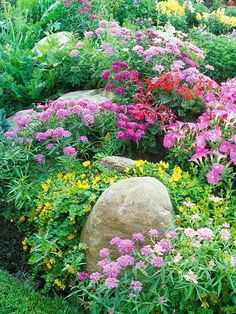 flower garden care cottage garden large boulders surrounded by purple and yellow flowers Garden Shrubs, Shade Garden, Potager Garden, Rockery Garden, Terraced Garden, Sloped Garden, Garden Plants, Garden Cottage, Backyard Cottage