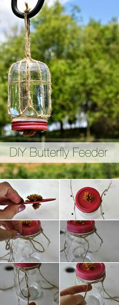Bring in the Butterflies.... Attract butterflies to your garden and yard with this DIY butterfly feeder!!!