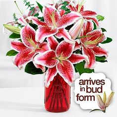 Gold Crown Flowers  Theshopstation Online Fresh Flowers Lilies Wedding Flowers  Birthday Flowers  Send Flowers  Flower Arrangements  Floral Arrangements  Lilies Bouquets >>> Be sure to check out this awesome product.