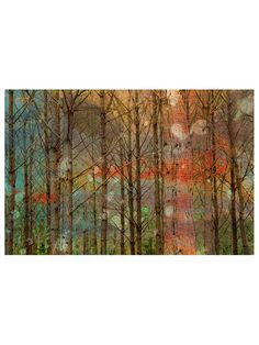 Through the Trees (Canvas) by Marmont Hill at Gilt