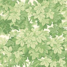 Cole & Son GREAT VINE LEAF GREEN Wallpaper