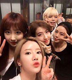 [단독]'프듀101' 걸그룹 불독, 20일 전격데뷔 확정 :: 네이버 TV연예