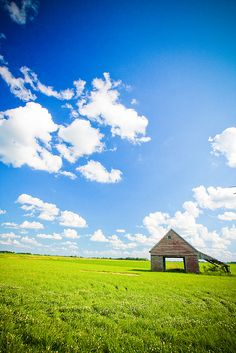 Iowa Farm. I've completely fallen in love with this state:)
