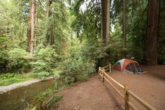 Best Camping Within 2 Hours of San Francisco - The Bold Italic - San Francisco