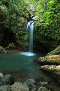 El Yunque Rainforest Half-Day Trip from San Juan, Puerto Rico ~ This was waterfall was amazing and so COLD!