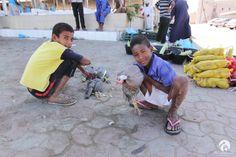 5 curiosities we came across in Oman