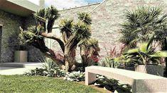 grammiki-a-διαμόρφωση-κήπου-3 Διακόσμηση και Διαμόρφωση Εξωτερικού Χώρου – κήπου. Plants, Plant, Planets