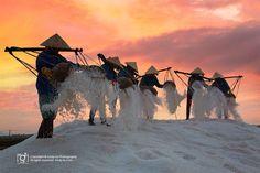 Salt field near Nha Trang, Khanh Hoa, Vietnam