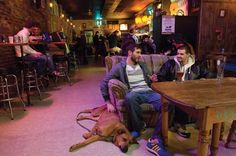 NACHBAR, Germantown neighborhood, Louisville, Ky. One of the hip bars in the city at present, and I still haven't been there. I can't quite see from this picture what the fuss might be about, other than maybe it's a great place for large hounds to get drunk and chill. Update: Went there. Met some cute girls (and hounds). Will go back. Update again: Made out with a gal there and got laid. (KevinR@Ky)