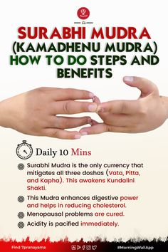 Yoga Facts, Kundalini Meditation, Hand Mudras, Full Body Gym Workout, Chakra Affirmations, Study Motivation Quotes, Genius Quotes, Knowledge Quotes, Spiritual Path