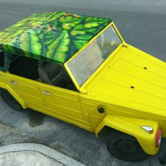 "Decoration, mural on top of the car ""Villas el Encanto"" Acrylic on fiberglass"