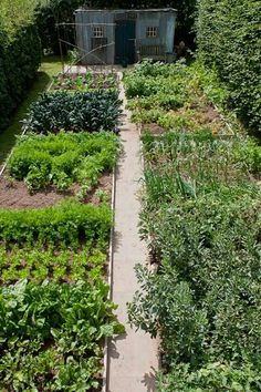 Modern homesteading experienced renewed popularity in the 1960s and has more recently been applied to urban areas – a concept known as Urban Homesteading. Shared by Edith Cruz  https://www.growveg.com/guides/urban-homesteading/  marshaarnold.co.uk