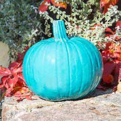 Should you put teal pumpkin on your doorstep?