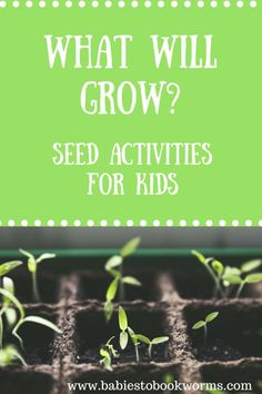 What will Grow? Learn about seeds, gardening, and predictions with this fun read aloud and various seed activities for kids! Seed Activities For Kids, Ocean Activities, Spring Activities, Creative Activities, Infant Activities, Free Activities, Learning Through Play, Fun Learning, Learning Activities