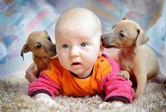 http://news-intime.ru/deti-i-zhivotnyye-foto/