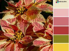 Monday Motivation – Color Palette #178