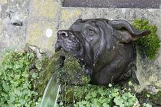 """BATTLE OF BELLEAU WOOD: """"This place is the Marine Mecca. Legend has it that the Marines adopted the bulldog as their mascot from the fountain.    Throughout the year, Marines come to visit the cemetery and the battlefield and to drink the water out of the dog's mouth, Nagel said.    """"They say it will add 10 years to your life,"""" Nagel said about drinking from the artesian well-fed fountain."""