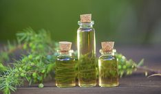 Tea Tree Oil for Acne Treatment