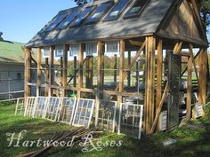 building a greenhouse from salvaged windows, doors, bricks and more. Window Greenhouse, Cheap Greenhouse, Greenhouse Effect, Backyard Greenhouse, Greenhouse Plans, Greenhouse Wedding, Homemade Greenhouse, Greenhouse Gases, What Is A Conservatory
