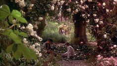 Replacement Secret Garden photo, since the other doesn't seem to work.