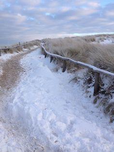 Winter in Holland, dunes Egmond aan Zee