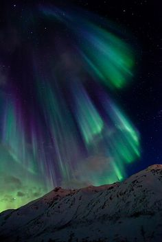 Northern Lights off the coast of Norway
