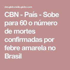 CBN - País - Sobe para 60 o número de mortes confirmadas por febre amarela no Brasil