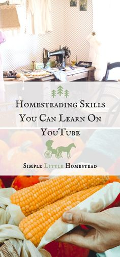 YouTube is a place where you can watch people game, find books to read, but you can also find skills to learn. Check out what homesteading skills you can learn on YouTube!