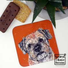 Coaster, Border Terrier, Border Terrier Gifts, Terrier Coaster, New Home, Birthday, Wedding, Anniversary, Dogs, Coaster, Cup Mat, Dog Gift, Watercolour Drawings, Watercolor And Ink, Cute Coasters, Letterbox Gifts, Cup Mat, Different Dogs, Border Terrier, Whippet, Ink Painting