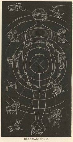 Constellations Discover Astrology Reading with Meiko Positive appointments with spirit Astrology Zodiac, Zodiac Signs, Astrology Compatibility, Medical Astrology, Learn Astrology, Pisces, Astrology Planets, Astrology Report, Tarot Astrology