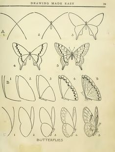 Schmetterling zeichnen / 40 Easy Step By Step Art Drawings To Practice - Bored Art Drawing Lessons, Drawing Techniques, Art Lessons, Drawing Ideas, Drawing Practice, Designs For Drawing, Art Drawings Sketches, Animal Drawings, Pencil Drawings