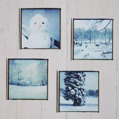 4  SLOTTSKOGEN POSTCARDS