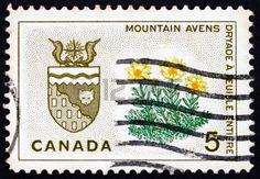 1966 Canadá-Escudo de los Territorios del Noroeste