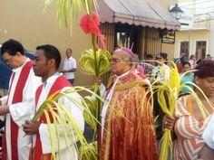 Católicos realizan procesión hasta la Catedral por Domingo de Ramos