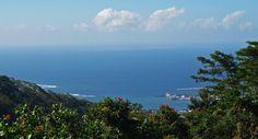 Samoa Tourism Authority : Vailima Botanical Gardens