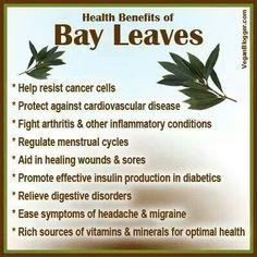 More information on bay leaves . More information on bay leaves . Healthy Herbs, Healthy Tips, Healthy Eating, Healthy Drinks, Bay Leaf Tea Benefits, Saffron Benefits, Natural Cures, Natural Healing, Holistic Healing