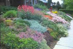 xeriscaping in california low desert | Water Conservation Ideas: Xeriscape Landscaping!
