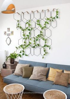 Marvelous Think Devil's Ivy vine, Philodendron, Swedish Ivy, Spider Plant, or succulents like String of Pearls and String of Bananas. These plants tend to like being placed near filtered light: a ..