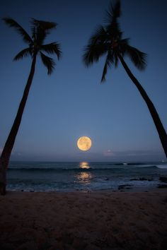 Beautiful!  (via Super Full Moon Over Hawaii May 5 | Hawaii Reporter)