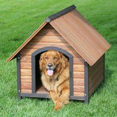 classique niche pour chien en bois