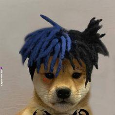 Graffiti Wallpaper, City Wallpaper, Dog Wallpaper, Cartoon Wallpaper, Dark Background Wallpaper, Hello Memes, Lil Peep Hellboy, Best Gaming Wallpapers, Gamer Pics