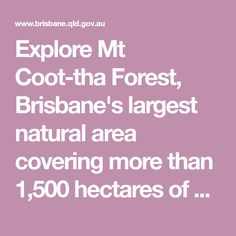 Explore Mt Coot-tha Forest, Brisbane's largest natural area covering more than 1,500 hectares of open eucalypt forest. Enjoy the views from the top of Mt Coot-tha, see the native animals that live in the forest and have a picnic and relax.