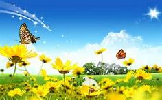 Summer Season Picture - Yahoo India Image Search results