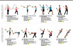 TRX Suspension Training Exercise Poster with over 8 Different Exercises