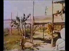 250 Year Old Devraha Baba of Vrindavan (Very Rare Footage)