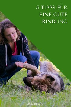 5 Tipps für eine gute Bindung Bond – the magic word in the dog world. Every dog ​​owner wants a good and stable bond to [. Dog Training Classes, Dog Training Tips, Food Dog, Best Bond, Dog School, Pet Care Tips, Dog Agility, Dogs Of The World, New Puppy