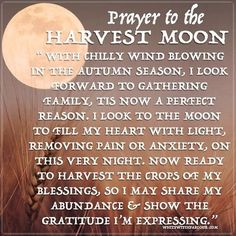 A Prayer to the Harvest Moon ~ The White Witch Parlour Wicca Witchcraft, Magick, Full Moon September, Moon Spells, Full Moon Ritual, Moon Quotes, Moon Witch, Mabon, Samhain