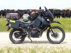 Favorite Picture - Page 24 - KLR650.NET Forums - Your Kawasaki KLR650 Resource! - The Original KLR650 Forum!