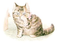 The Story of Miss Moppet - She thinks it is a very hard cupboard!