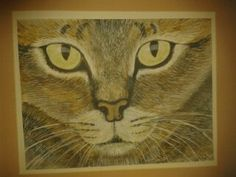 Cats Eyes watercolour painting